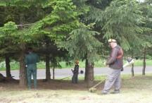 Les pensionnaires de l'ESAT participent à l'entretien des espaces verts de la commune